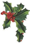 christmasholly11